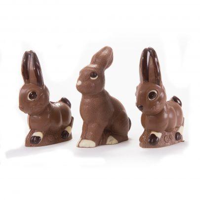 chocolateBunnies2